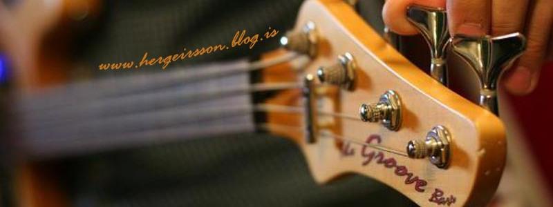 hergeirsson bloggar - Hausmynd